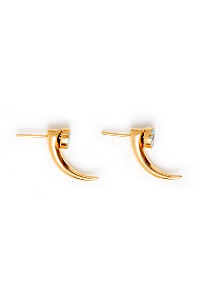Earrings Hook