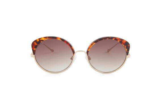 Cocoon Champagne Sunglasses